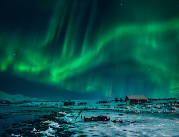 Northern Lights with The Arctic Drive